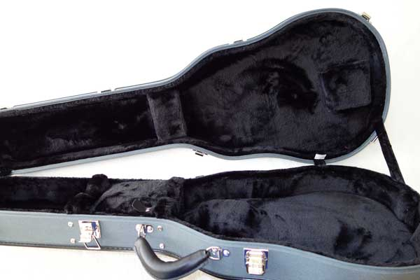 NEW Ameritage AME-S-40 Les Paul Case, Silver Series, Professional 6-Ply Hardshell Arched Case for Gibson Les Paul and Copies