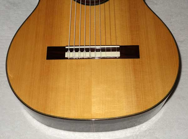 Bartolex SLS10 Classical 10-String Guitar w/Case, Spruce Top