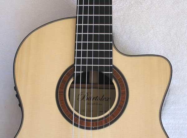 2010 Bartolex SRS7CEL 7-String Classical Harp Guitar Top