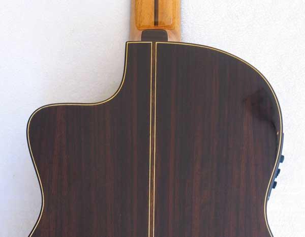 2010 Bartolex SRS7CEL 7-String Classical Harp Guitar Back
