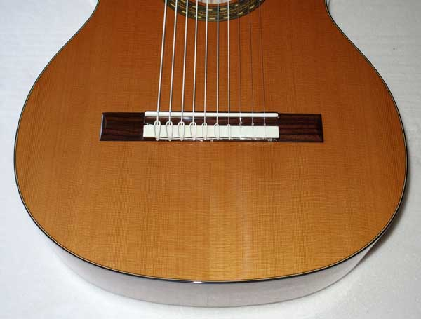 NEW Cathedral Guitar 2015 Model 125 Ten-String Classical Harp Guitar w/Hardshell Case [Cedar/Mahogany] Decacorde 10-String
